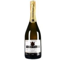 Вино игристое Teliani Valley белое сухое 0,75л
