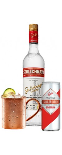 Набор Водка Stolichnaya 1,0л 40% 2шт. + Ginger Beer Stoli 0,25 л х 24 шт + кружка